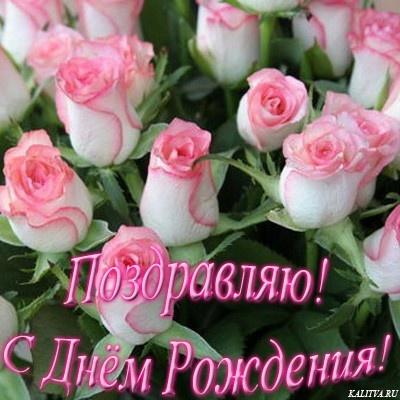 Поздравления с днем рождения девушке алсу
