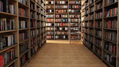 Библиотека имени Лермонтова приглашает белокалитвинцев за книгами на новогодних каникулах
