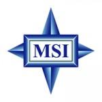 MSI K9NBPM2-FID - ����� � NVIDIA Quadro NVS 210S