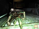 S.T.A.L.K.E.R.: Shadow of Chernobyl - ����� ���������